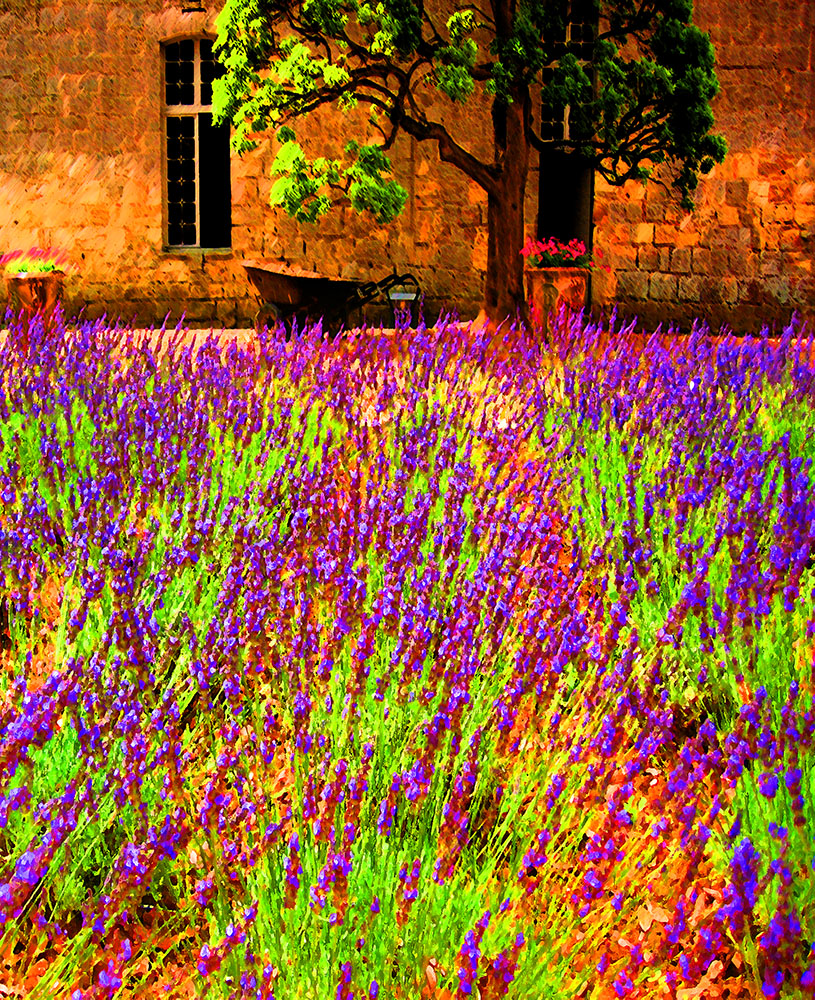 provence impressionist photography by don o thorpe